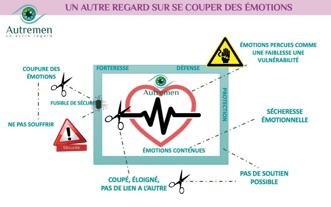 Un Autre Regard sur les émotions… En vie? ou couper de ses envies? de ses émotions?